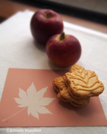 maple buiscuits 1 (sig)