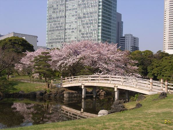(c) Tokyo Metropolitan Association